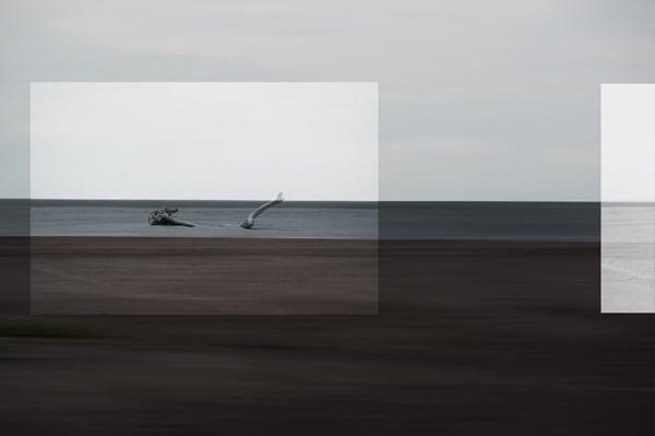 Fineart 1 - Henrique Borges