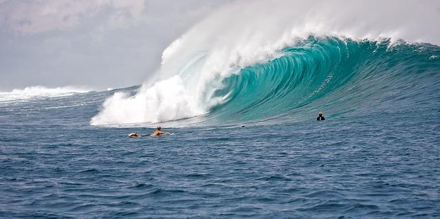 Aplicativos de Surf Que Você Deve Conhecer